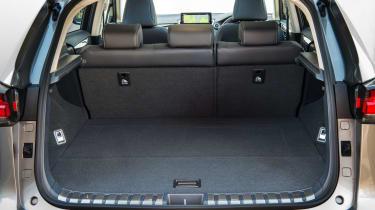Lexus NX 300h boot